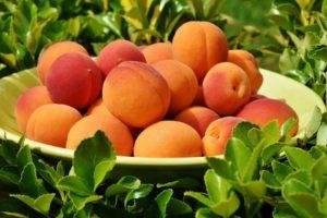 Peaches_Goon_(Box_Wine)_and_Tonic_Water_Goon_Recipe
