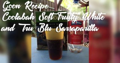 Coolabah-Soft-Fruity-White-and-Tru-Blu-Sarsaparilla-Goon-Mixer-Recipe