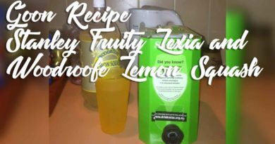 Stanley-Fruity-Lexia-and-Woodroofe-Lemon-Squash-Goon-Mixer-Recipe