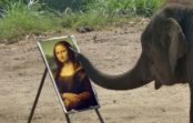 Keepers At Australia Zoo Teach An Elephant To Paint The Mona Lisa